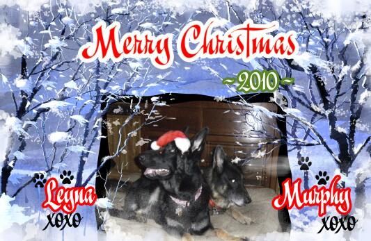 2010-12_christmas_card